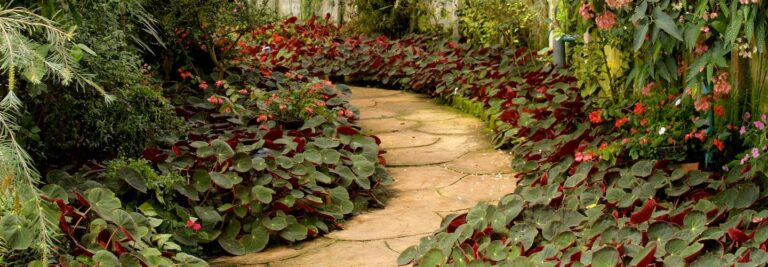 How to Maintain Your Patio During Autumn & Winter