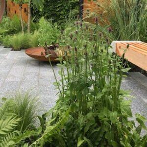 BBC GWLIVE Show Gardens 2019