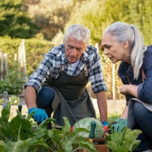 More Than Half Over-60s To Spend Isolation Gardening