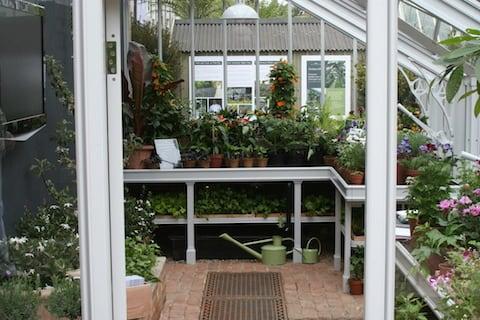How To Create A Kitchen Garden Blog