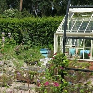 Why Are Kitchen Gardens So Important In Today's Society?